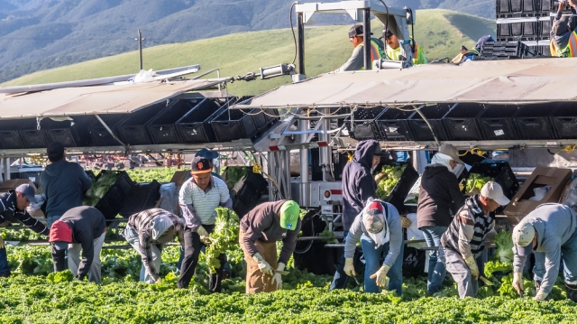 Devastating fallout of corporatization of agriculture in USA