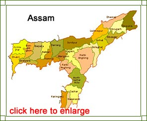 SUCI(C) Assam State Committee on recent decisions of the State Government on language and other issues